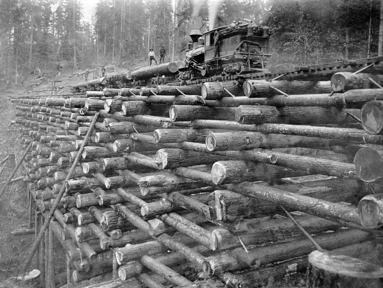 Colorado logging railroads