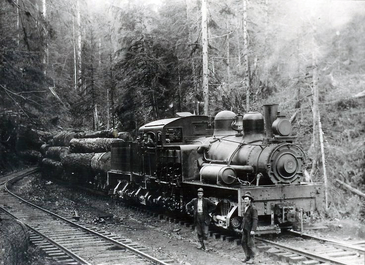 the history and importance of the development of railroads in the pacific northwest And influences in the development of the pacific northwest by tessa totten  and reasons why, 3) impact on local industries – especially railroads and mining, and 4) population migrations.