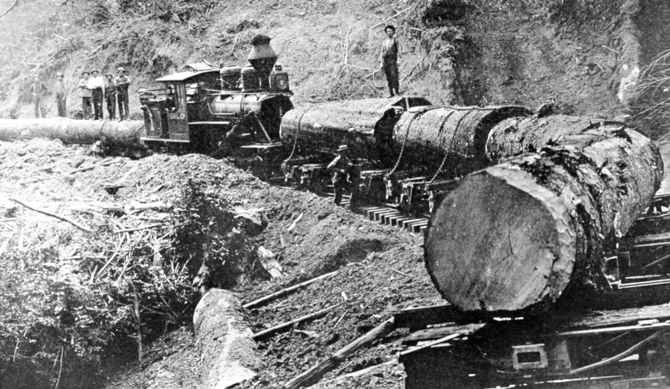 Other Western Logging Railroads