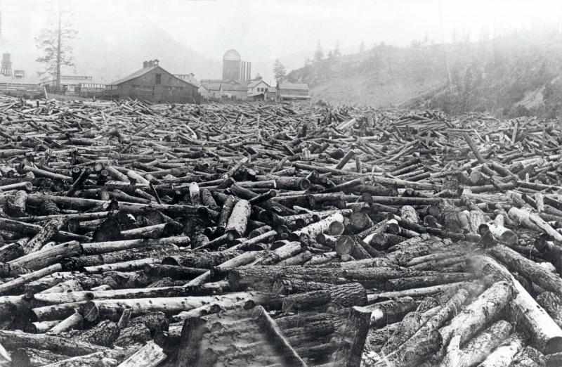 Montana Logging Railroads